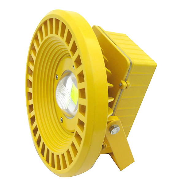 50W Explosion Proof Light (Cool White / Warm White)